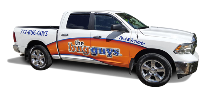 Vehicle Wraps - Florida